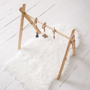 Clover and Birch Timer Activity Gym