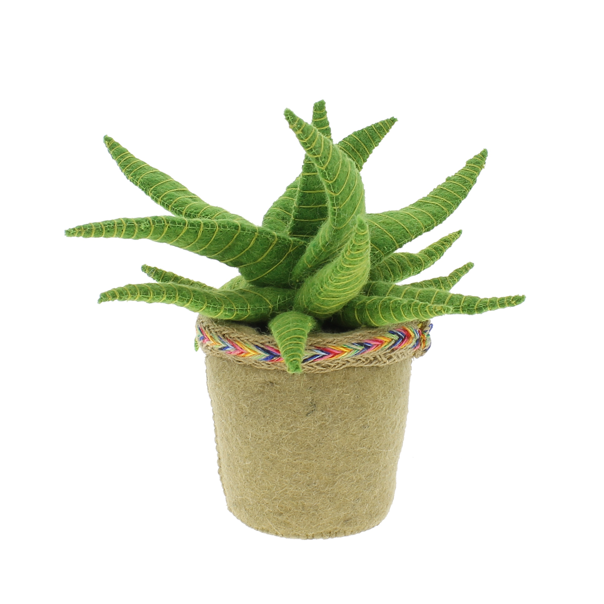 fiona walker england aloe vera cactus book stopper thetot. Black Bedroom Furniture Sets. Home Design Ideas