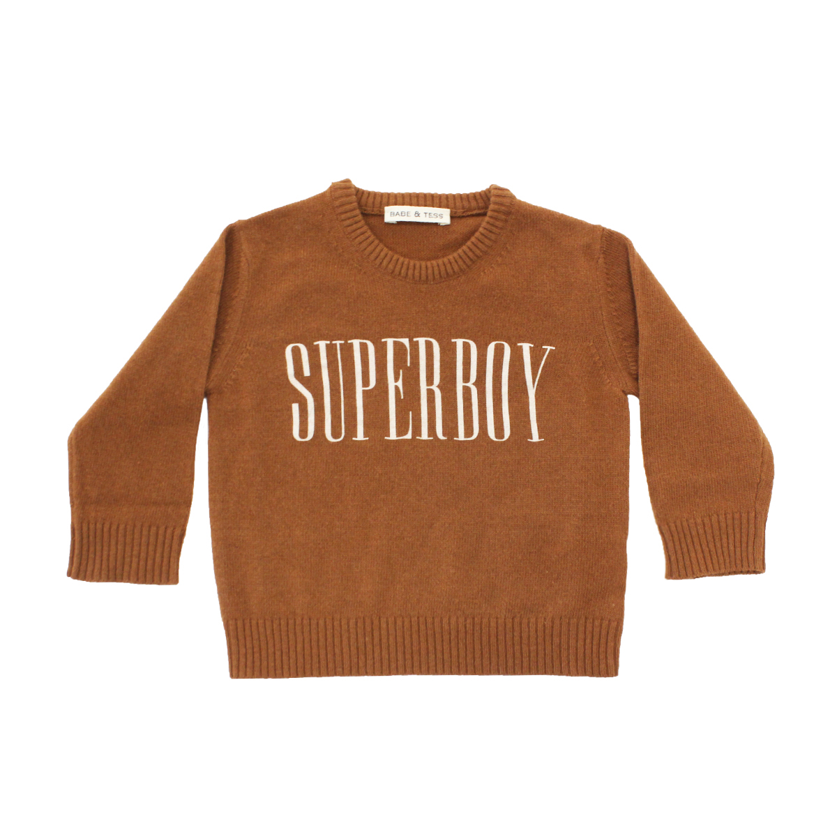 Babe & Tess Sweater in Rust with Superboy print