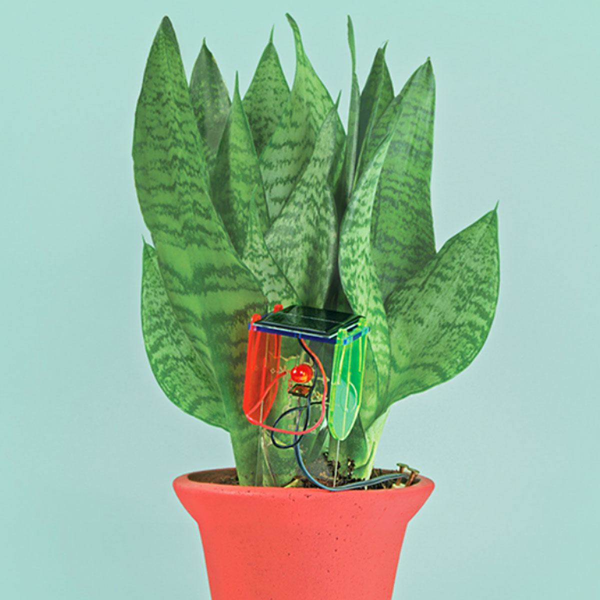 Tech Will Save Us Thirsty Plant Kit
