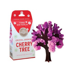 Copernicus Crystal Growing Kit in Cherry Tree
