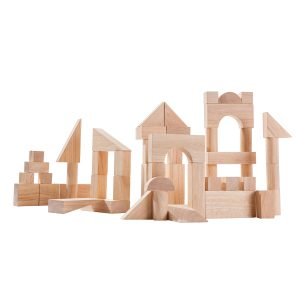 PlanToys 50 Unit Blocks