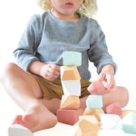 Rock Blocks Terra Set of 16 FW19