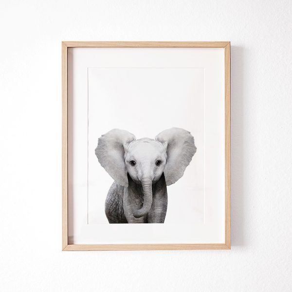 LamourFouPrintShopElephantPrint1