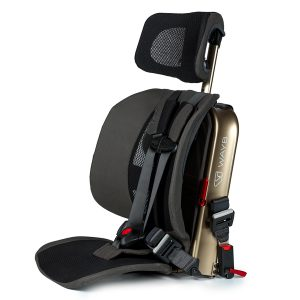WAYB Pico Car Seat Earth