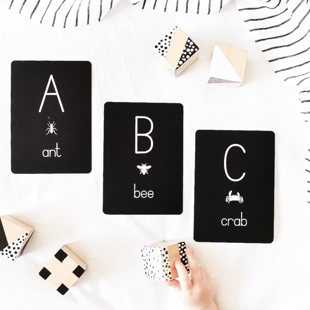 Alpha Baby Designs Alphabet of Animals Flash Cards