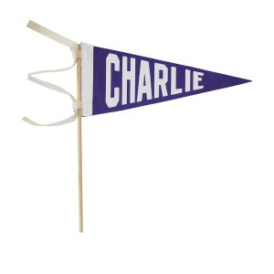 The Letterman Co Name Pennant With Stick - Purple