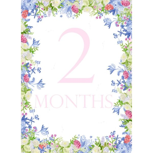 PeepsPaperProductsFloralMonthCards2