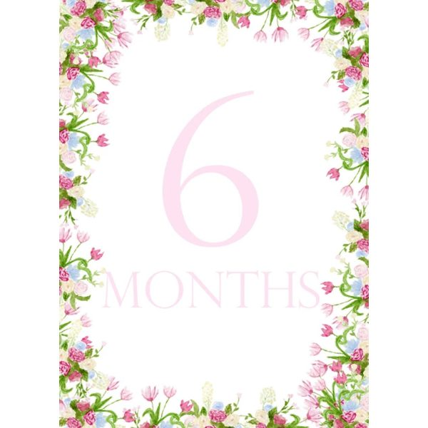 PeepsPaperProductsFloralMonthCards3