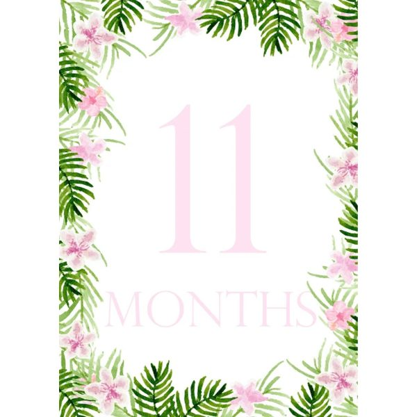 PeepsPaperProductsFloralMonthCards4